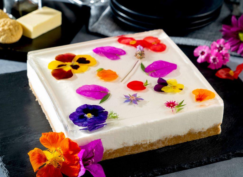 tarta-de-queso-con-gelatina